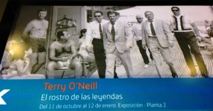 Terry O´neall